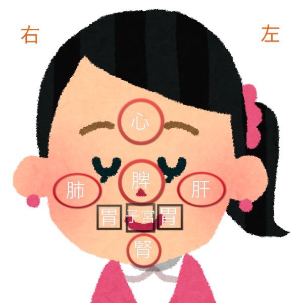 東洋医学的顔